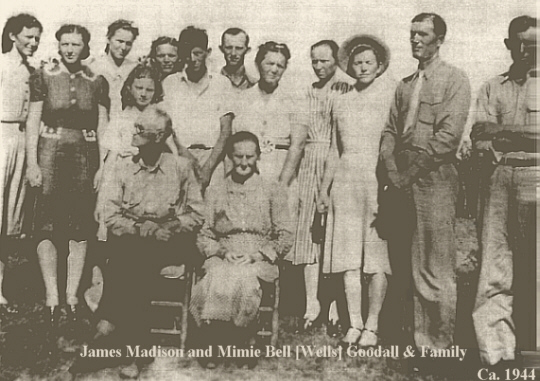 Photo of James Goodall Family of Marion Co AR