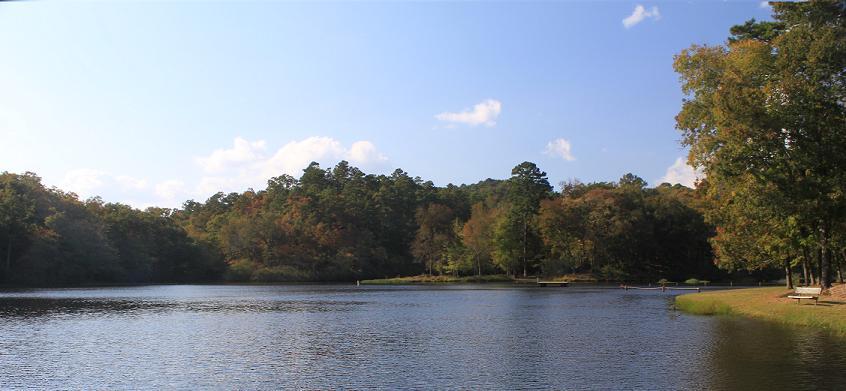 Ccc Site Shady Lake Onf Polk Co Arkansas